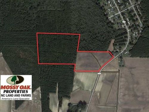 33 Acres of Hunting And Timber Lan : Lucama : Wilson County : North Carolina