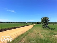 Hwy 39 Hay Farm : Wagener : Aiken County : South Carolina