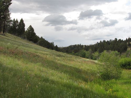 20 Acres With A Creek And Power : Boulder : Jefferson County : Montana