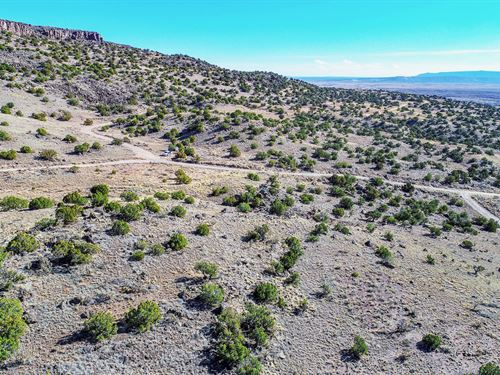Acreage Near City & National Forest : Milan : Cibola County : New Mexico
