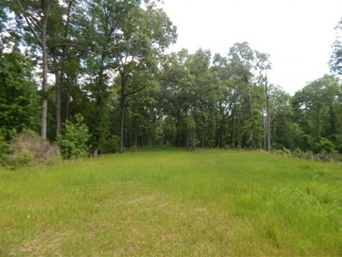 501 Acres In Adams County, Ms : Sibley : Adams County : Mississippi