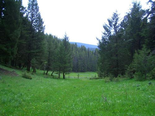 Surrounded By Forest Service Land : White Sulphur Springs : Meagher County : Montana