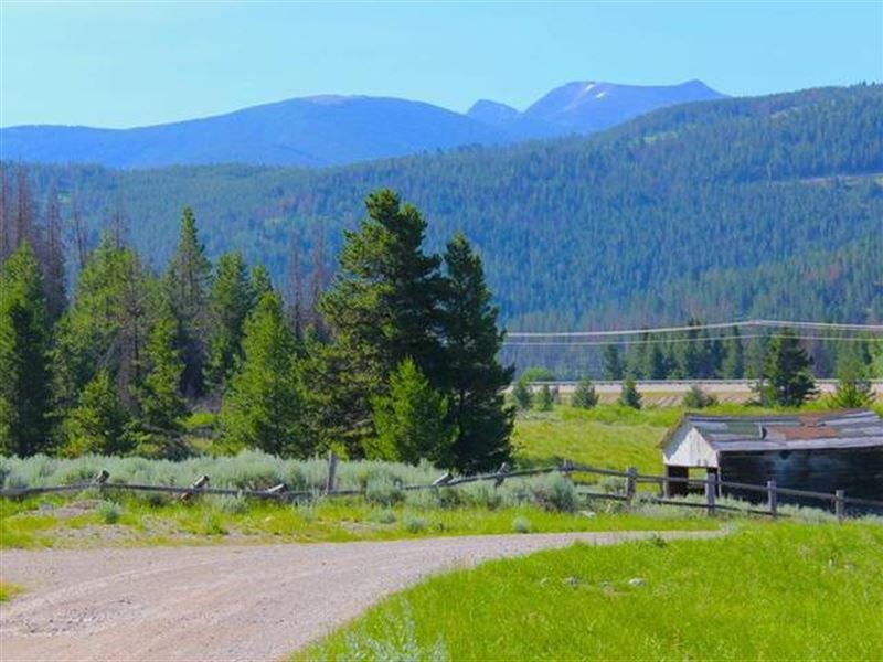 40 Acres Bring Your Mule : Anaconda : Deer Lodge County : Montana