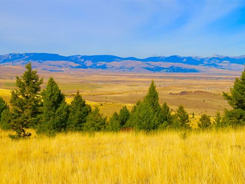 43.21 Acres in Butte, Montana : Butte : Silver Bow County : Montana