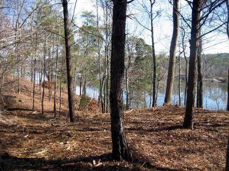14.68 Acres Water Access Lot : Quinton : Walker County : Alabama