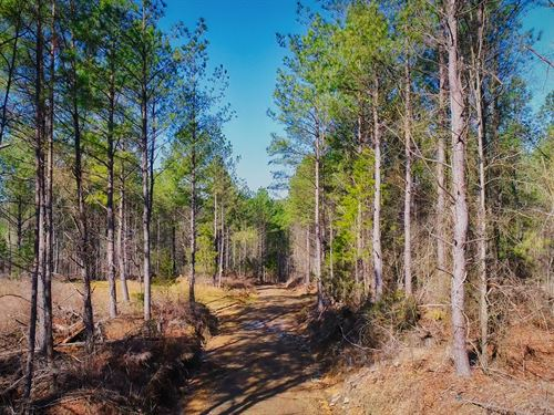 68-Acres On Cowpens Pacolet Road : Cowpens : Cherokee County : South Carolina