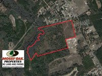 67.61 Acres of Hunting And Residen : Laurinburg : Scotland County : North Carolina