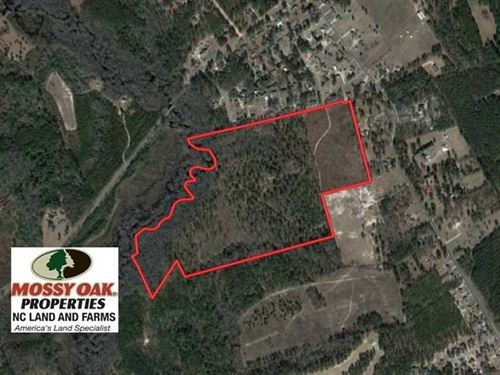 Reduced, 67.61 Acres of Hunting : Laurinburg : Scotland County : North Carolina