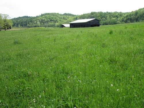 57 Acre Farm In Metcalfe County, Ky : Edmonton : Metcalfe County : Kentucky