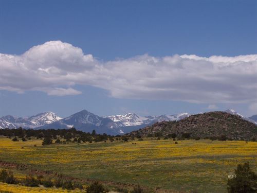 Mountain Paradise In Westcliffe : Westcliffe : Custer County : Colorado