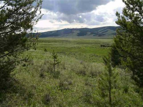 Arrowstone Tract 8 : Philipsburg : Granite County : Montana