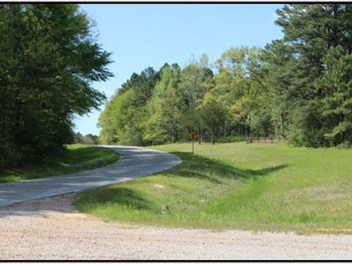 125 Acres In Attala County : Kosciusko : Attala County : Mississippi
