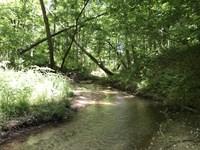 Elder Mill : Watkinsville : Oconee County : Georgia