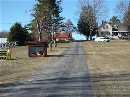 61 Acre Working Horse Ranch : Manistee : Manistee County : Michigan