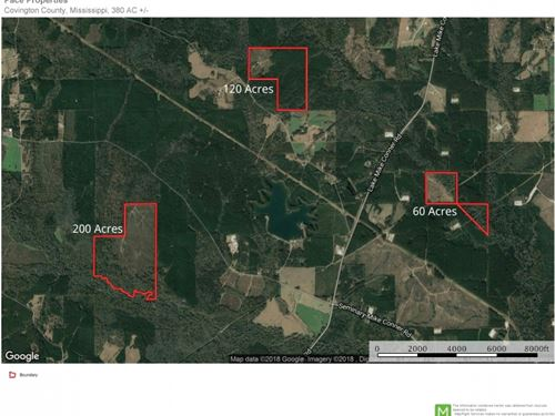380 Acres Ms Timberland For Sale : Collins : Covington County : Mississippi