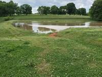 Buckhead Farm : Madison : Morgan County : Georgia