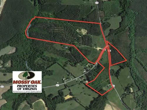 80 Acres of Hunting Land For Sale : Nathalie : Halifax County : Virginia