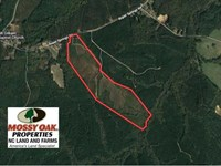 Reduced, 102 Acres of Hunting Lan : Littleton : Halifax County : North Carolina