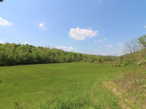 Cannelville Rd - 85 Acres : Roseville : Muskingum County : Ohio