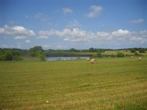 206 Acres of Open Land : Burkville : Lowndes County : Alabama