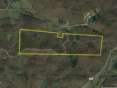 149 Acres County Rd 217 Wayne Co : Silva : Wayne County : Missouri
