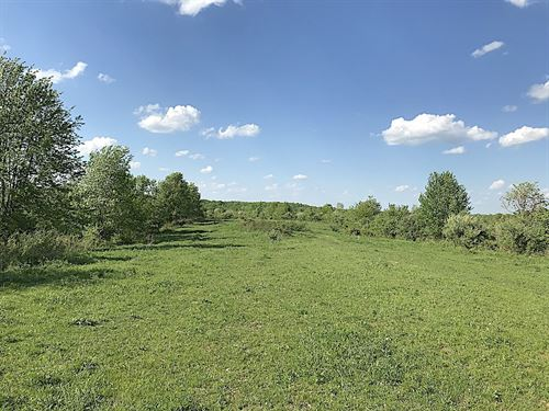 Cr 14, 40 Acres : Waterloo : Lawrence County : Ohio