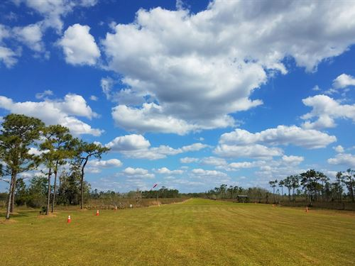 Airstrip, Center Of Nature Preserve : Ochopee : Collier County : Florida