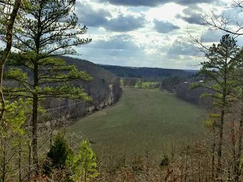 3/2 Home With 199 Acres on Spring : Wasola : Ozark County : Missouri