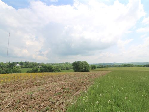 Lutz Lane - 173 Acres : Zanesville : Muskingum County : Ohio
