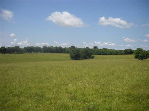 89 Acres of Fenced Pasture Land : Burkville : Lowndes County : Alabama