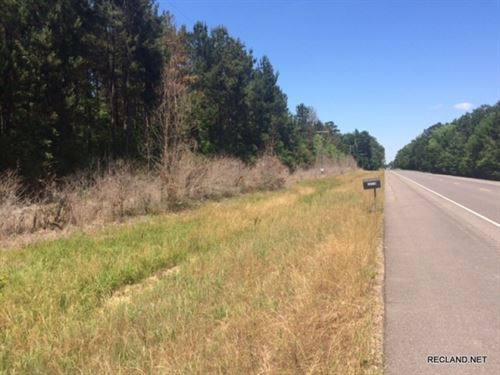 13.1 Ac, Wooded Tract For Home Sit : Deville : Rapides Parish : Louisiana