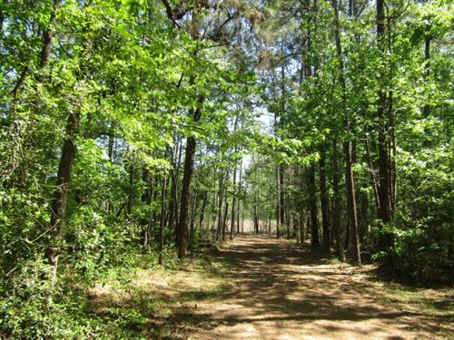 40 Acres In Marion County : Columbia : Marion County : Mississippi