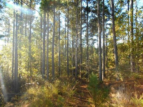 330 Acres In Carroll County In McCa : McCarley : Carroll County : Mississippi