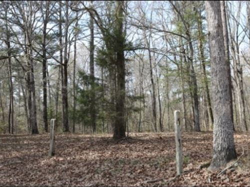 15.4 Acres In Neshoba County In Phi : Philadelphia : Neshoba County : Mississippi