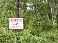 Thunder Mountain Ranch Tract 45 : Birch Tree : Shannon County : Missouri