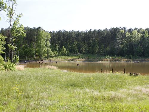 Beaverdam Creek : Crawfordville : Taliaferro County : Georgia