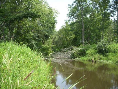 Hayes Farm : Rock Hill : York County : South Carolina
