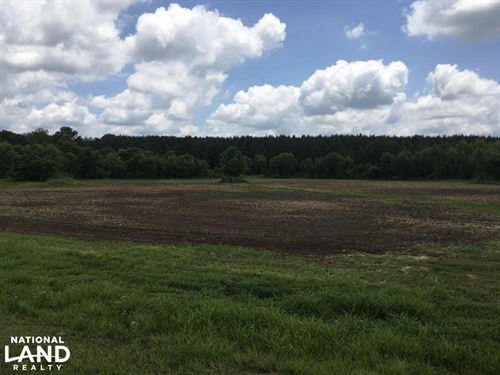 Sidon Duck Hole : Vaiden : Carroll County : Mississippi