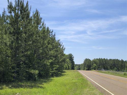 169 Ac Sh 63 : Burkeville : Newton County : Texas