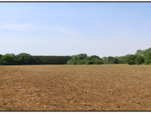 46 Acres In Tallahatchie County : Oakland : Tallahatchie County : Mississippi