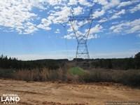 Timber & Recreational Land With Pon : Kosciusko : Attala County : Mississippi