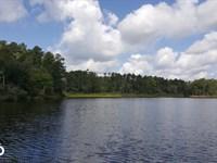 32 Acre Water Frontage Homesite : Livingston : Polk County : Texas