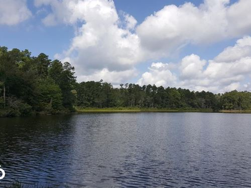 32 Acre Water Frontage Homesite : Livingston : Polk County : Texas