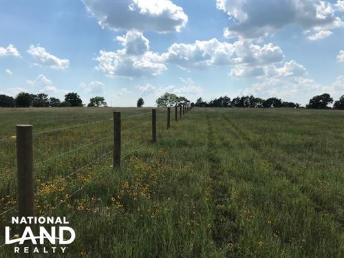 13.5 Acres, Rolling, Pasture, Timbe : Mabank : Van Zandt County : Texas