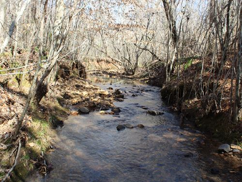 Beautiful Pines, Creek, Lower Price : Roanoke : Randolph County : Alabama