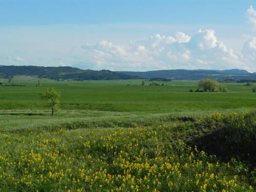 Andersen 80 Acres : Sturgis : Meade County : South Dakota