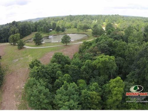 Land For Sale In Kentucky Jost Tra : Breeding : Metcalfe County : Kentucky