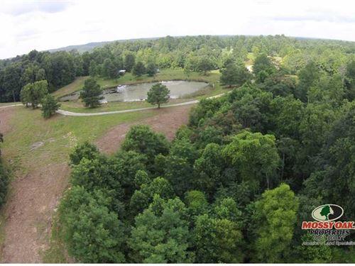 Land For Sale In Kentucky Jost Tra : Breeding : Metcalfe County : Kentucky