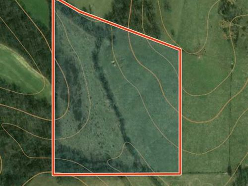25 Acres of Private Retreat, Opti : Perryville : Bollinger County : Missouri