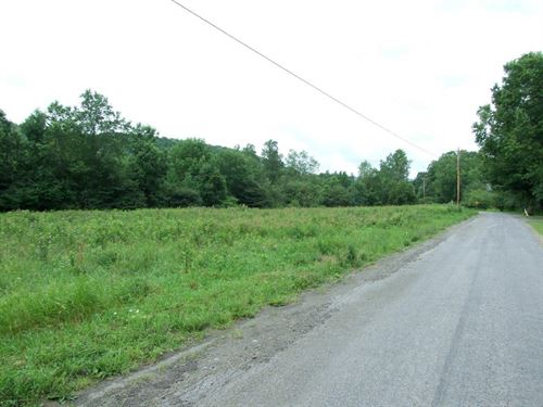 Sealed Bid Land Auction : Cortland : New York